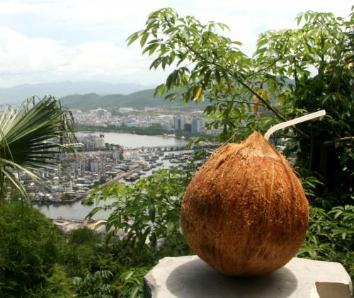 Coconut (not loaded), Hainan