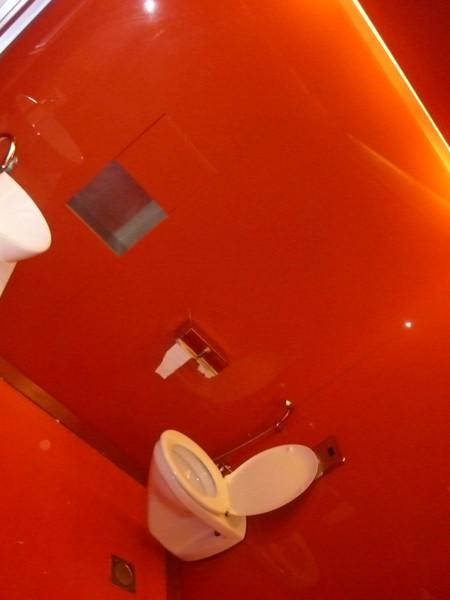 Loud toilet